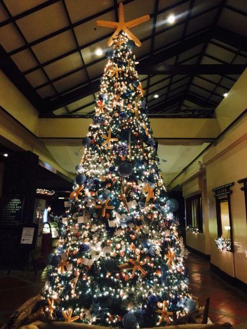 Foto Ide Desain Pohon Natal Paling Kreatif, Indah, dan Lucu 58