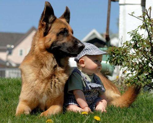 Foto Tentang Persahabatan Anak dan Hewan Peliharaan 16