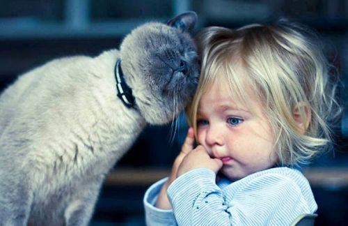 Foto Tentang Persahabatan Anak dan Hewan Peliharaan 6