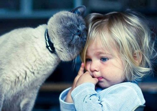 Foto Tentang Persahabatan Anak dan Hewan Peliharaan