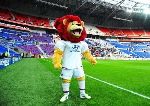 Foto Stadion Parc Olympique Lyonnais 7