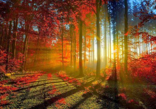 Gambar Pemandangan Indah di Dunia29